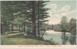 Pine Trees, Miller's River, Orange, MA Massachusetts Pre-1907 Postcard