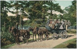 Stage Coach Wagon, Beacon Hill Park, Victoria, BC, Canada - Early 1900s Postcard