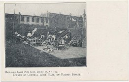 Central Wood Yard, Pacific St., Brooklyn, NY New York Pre-1907 Postcard