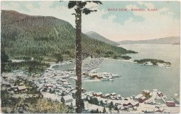 Bird's Eye View, Town of Wrangell, Alaska AK - Early 1900's Postcard