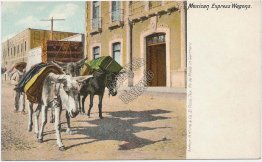 Mexican Express Wagons, Mexico - Early 1900's Postcard