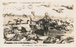 Duck Hunting, Langley Prairie, British Columbia BC, Canada - Early RP Postcard