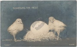 2 Chicks, Egg Nest - 1908 ROTOGRAPH Real Photo RP RPPC Easter Postcard