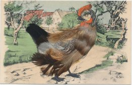 Rooster w/ Real Feathers - Early 1900's Easter ? Hand Colored Postcard