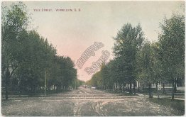Yale St., Vermillion, SD South Dakota - Early 1900's Postcard