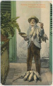 Tobacco Cigar Street Seller, Havana Habana, CUBA - Early 1900's Postcard