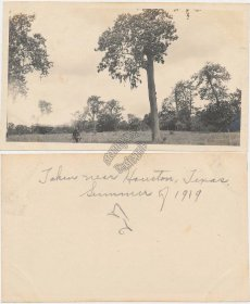 Country Scene, near Houston, TX Texas - Early 1900's Photo Photograph