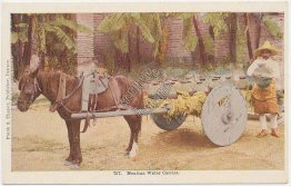 Mexican Water Carrier, Horse Drawn Wagon, Wagon - Early 1900's Postcard