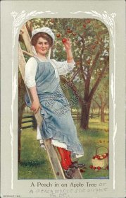 Woman Leaning on Ladder, Peach in Apple Tree - Early 1900's Western Postcard