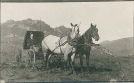 Horse Drawn Coach Wagon, Kethcum, ID Idaho - Early 1900's Real Photo RP Postcard