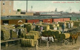 Handling Cotton, Memphis, TN Tennessee - Early 1900's Postcard