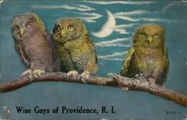 3 Owls on Tree Branch, Providence, RI Rhode Island - 1911 Postcard