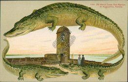 Old Watch Tower, St. Augustine, FL Florida ALLIGATOR BORDER S554 Postcard