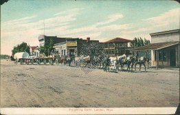 Freightin Outfit, Horse Drawn Wagon, Lander, WY Wyoming - Early Postcard