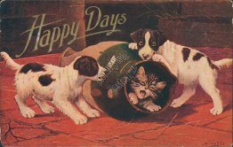Dogs Playing w/ Cat in Vase, McMinn, Belmont, TN 1909 Postcard