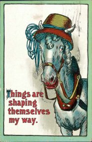 Horse Dressed in Hat - Early 1900's Postcard