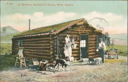 A Western Bachelor's Home, Wife Wanted, Cartwright, ND 1908 Postcard