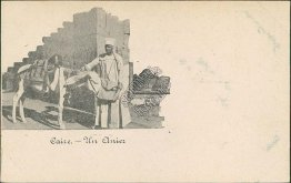 Horse, An Anchor, Cairo, Egypt - Early 1900's Postcard