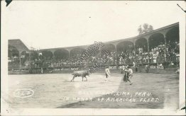 Bull Fight, Lima, Peru in Honor of US Navy Atlantic Fleet - Early RP Postcard