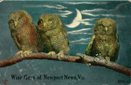 3 Owls, Wise Guys of Newport News, VA Virginia - Early 1900's Postcard