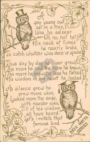 Gay Young Owl, Poem, Desk Motto Series MMS Artist Signed Early 1900's Postcard