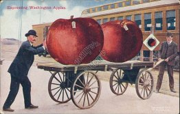 Train, Expressing Washington Apples, WA Exaggeration - Early 1900's Postcard