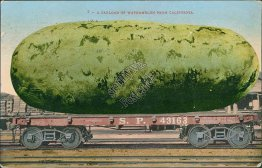 Southern Pacific R.R., Carload of Watermelon CA California Exaggeration Postcard