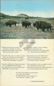 Buffalo, Old Timer, Audrey Souder Buck Poem - Early 1900's Postcard