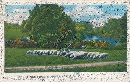 Greetings from Mountaindale, NY New York, Early 1900's Postcard, Hebrew Message