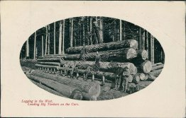 Logging in the West, Loading Big Timbers on Cars - Early 1900's Postcard