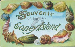 Souvenir, Coney Island, NY SHELL BORDER Postcard, 1907 Mileses, Hankins Cancel