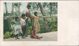 Waiting for the Circus - Black Americana DETROIT PHOTOGRAPHIC Pre-1907 Postcard