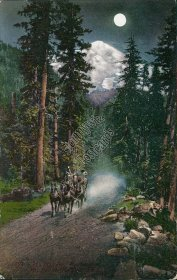 Horse Wagon at Night, Mt. Rainier, WA Washington - Early 1900's Postcard