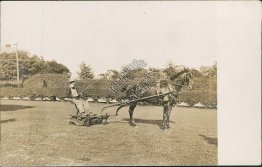 Horse Drawn Soil Tiller - Early 1900's Real Photo RP Tilling Postcard
